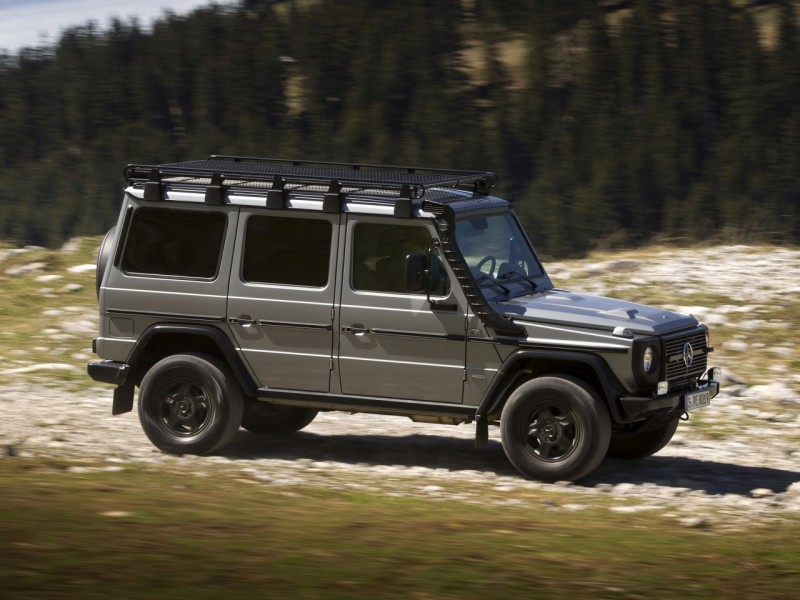 2010_Mercedes-Benz_G300_(_W461_)_CDI_Professional_006_6446